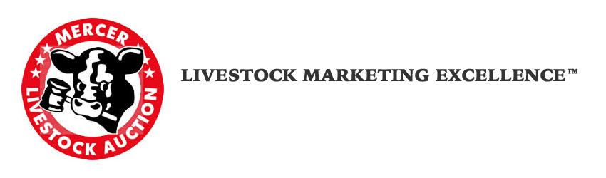 Mercer Livestock Auction
