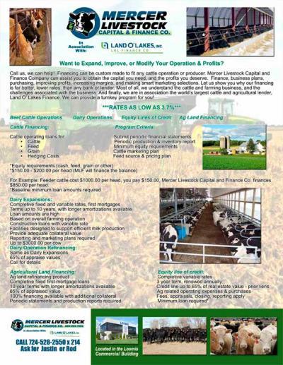 Mercer Livestock Capital & Finance