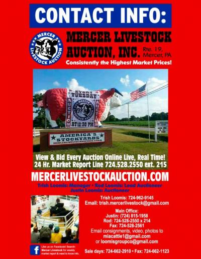 Special Auction - June 9th