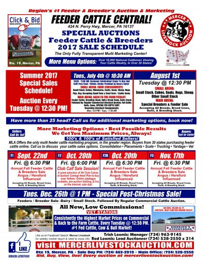 Special Auction Schedule